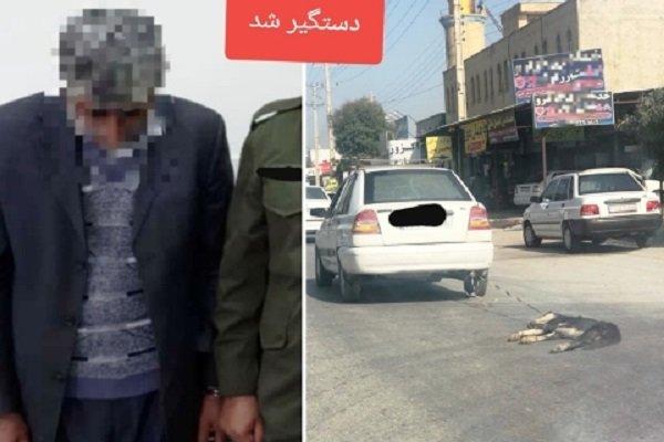 فرد حیوانآزار در بوشهر  دستگیر شد