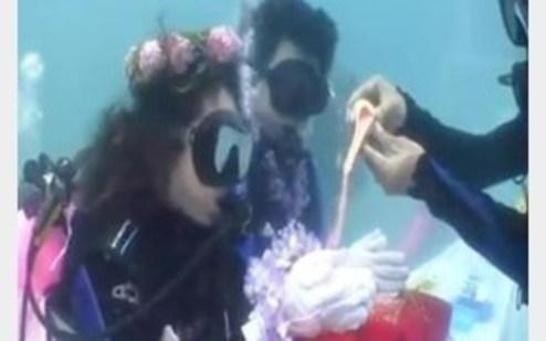 ازدواج در اعماق آبهای استرالیا