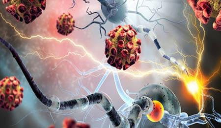 باکتری عامل افزایش احتمال سرطان روده